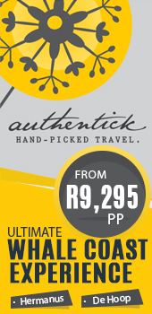 Authentick Travel - Whale Coast Experience