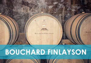 Bouchard Finlayson Article