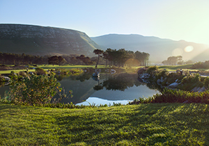 Hermanus Golf Course Landscape